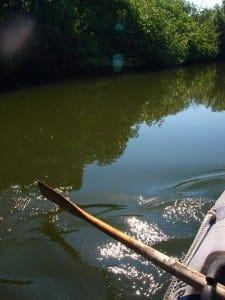 paddling in baja