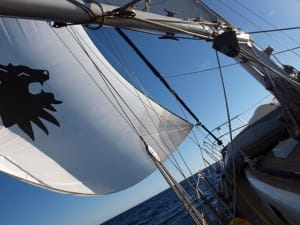 handling sail