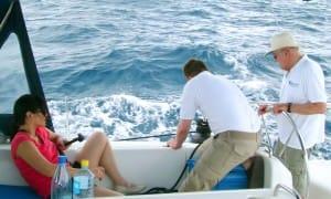 trimming sail