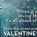 Sailors For The Sea – Take The NT3 Pledge