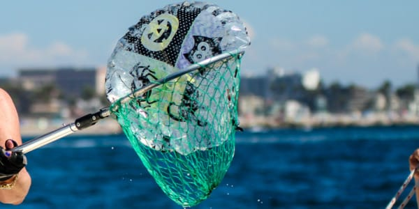 5 Things Sailors Can Do For A Cleaner Ocean
