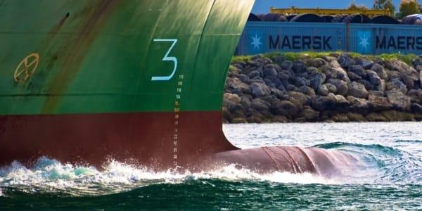 Merchant Ship Hull Markings